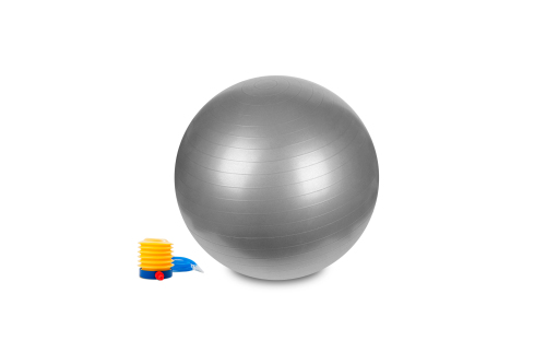 Hastings Gym Ball 65cm Silver