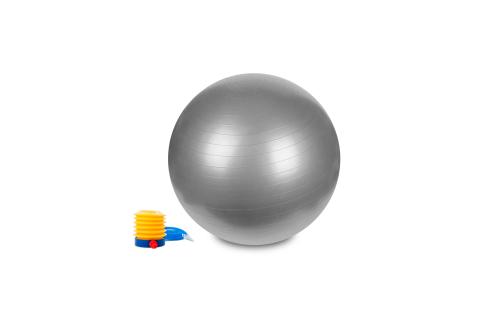 Hastings Gym Ball 55cm Silver