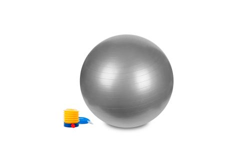 Hastings Gym Ball 65cm Silver