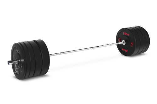 Pivot Fitness Pro Training Bumper Chrome Set 170 kg