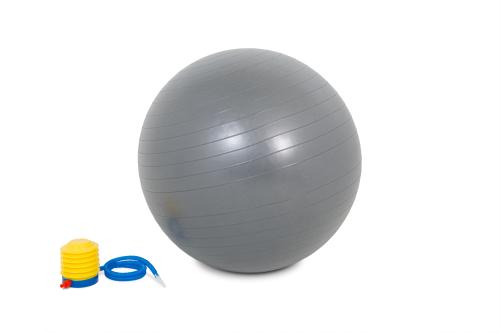 PowerMark Gym Ball 65cm